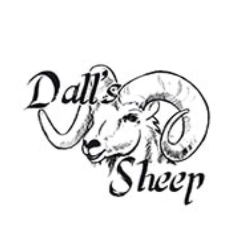 Dall´s Sheep